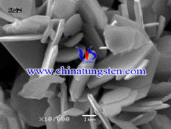 tungsten disulfide flake picture